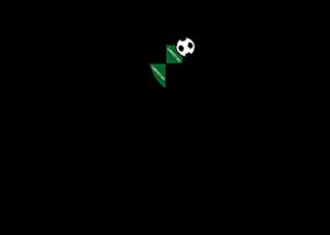 logo-fcsanlazzarocalcio