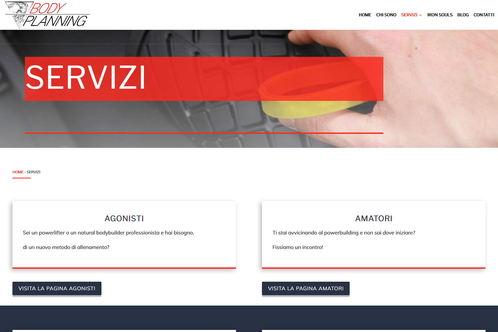 lv-design-realizzazione-siti-web-bologna-portfolio-body-planning-slide-3